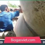 chi phí làmhầm biogas