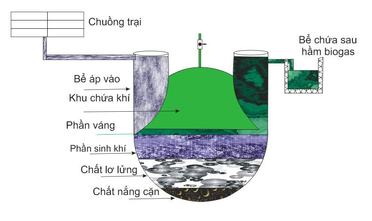 hầm biogas composite xử lý chất thải hiệu quả